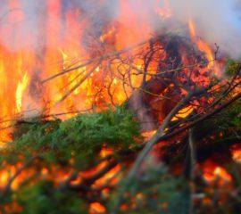 Grünschnitt für die Osterfeuer der Feuerwehr Löhne